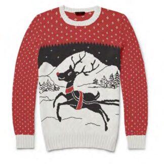 Jultröja Barn Rudolf, 13